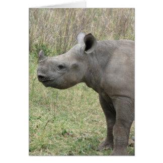 Cartão Bebê preto do rinoceronte