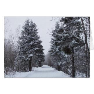 Cartão Beco Spruce