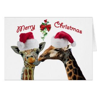 Cartão Beijando girafas do Natal sob o visco