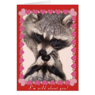 Cartão Beijando guaxinins