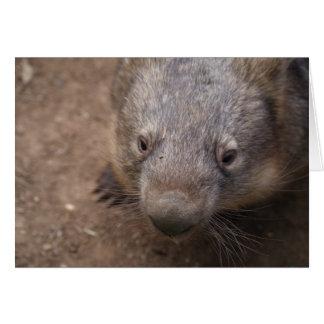 Cartão Beijo de Wombat