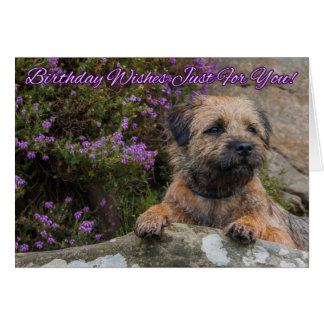 Cartão Beira Terrier em uma rocha com a urze roxa