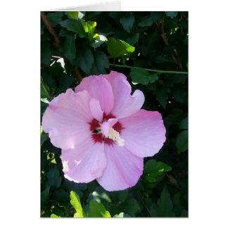 Cartão Beleza botânica pronta para iluminar alguma