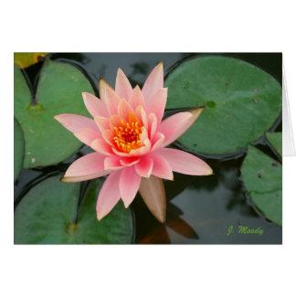 """Cartão """"Beleza de florescência """""""