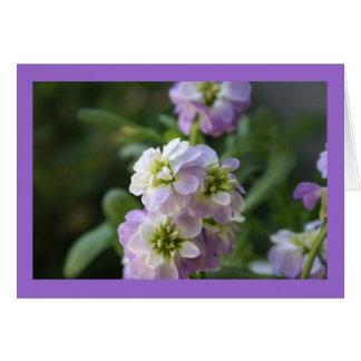 Cartão Beleza de primavera