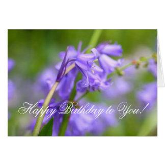 Cartão Beleza dos Bluebells