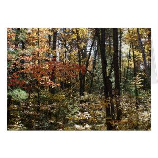 Cartão Beleza profunda das madeiras