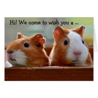 Cartão Birthday Card: Two Guiné Pigs