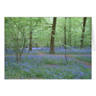 Cartão Bluebells em uma madeira