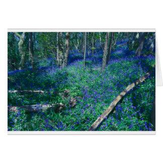 Cartão Bluebells na madeira