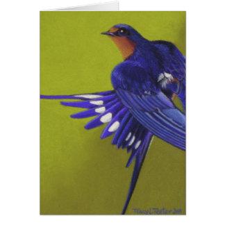 Cartão Bluebird, andorinha de celeiro