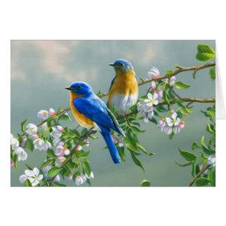 Cartão Bluebirds