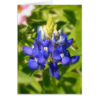 Cartão Bluebonnet de Texas