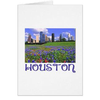 Cartão Bluebonnets de Houston Texas