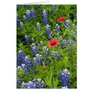 Cartão Bluebonnets de Texas com coberturas indianas
