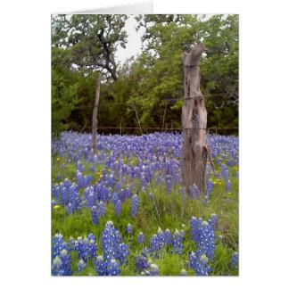 Cartão Bluebonnets de Texas e cargo de madeira natural da