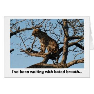 Cartão Bocejos do leopardo ao sentar-se em um membro de