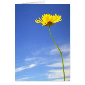 Cartão Bom dia! l flor amarela contra o céu azul