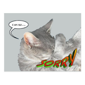 Cartão bonito da desculpa do gato cartão postal