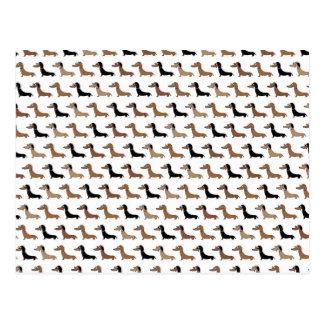 Cartão bonito de Daschund do cão de salsicha