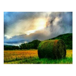 Cartão bonito de um hayfield