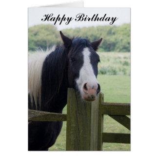 Cartão bonito do aniversário da cabeça de cavalo