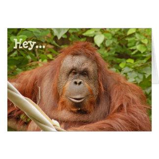 Cartão bonito do aniversário do orangotango