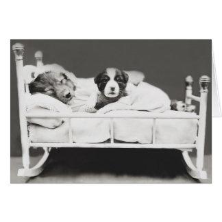 Cartão bonito do cão e do filhote de cachorro do