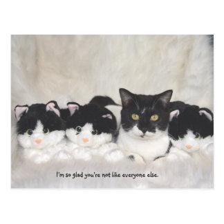 Cartão bonito do gato