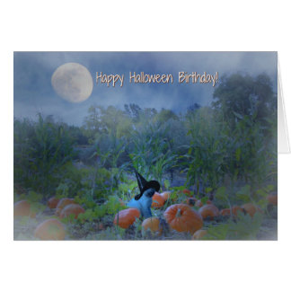Cartão bonito do gato do aniversário feliz do Dia