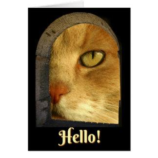 Cartão bonito do gato olá! olá!
