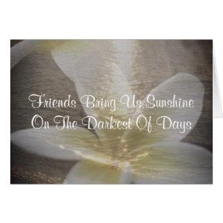 Cartão bonito do Plumeria das citações da amizade