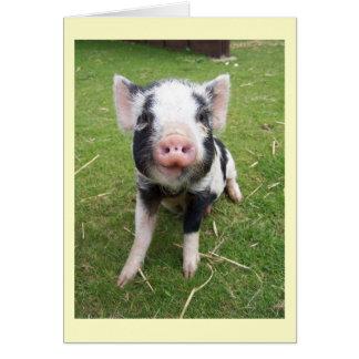 Cartão bonito do porco