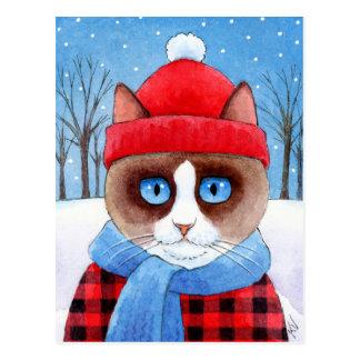 Cartão bonito do sapato de neve de Ragdoll do