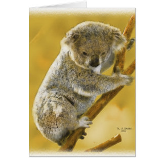 … Cartão bonito do urso de Koala…!