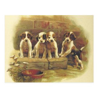 Cartão bonito dos filhotes de cachorro do vintage