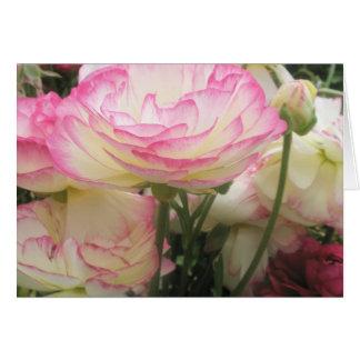 Cartão Bonito e cor-de-rosa