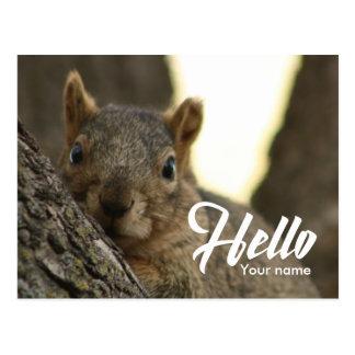 Cartão bonito engraçado do olá! da foto do esquilo cartão postal