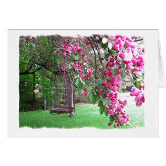 Cartão Bonito no rosa