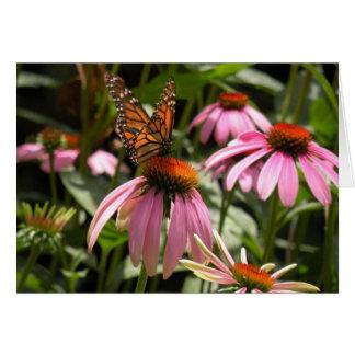 Cartão Borboleta de monarca em Coneflower