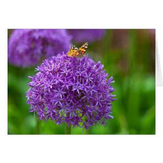 Cartão Borboleta na flor do Allium