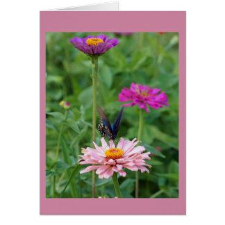 Cartão Borboleta no jardim