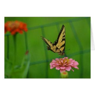 Cartão Borboleta no Zinnia cor-de-rosa Notecard