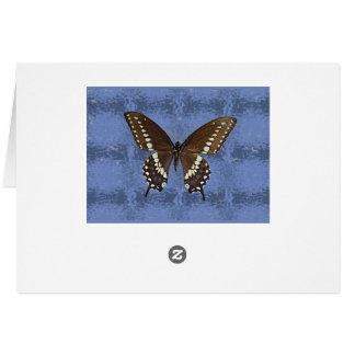Cartão Borboleta preta de Oklahoma Swallowtail