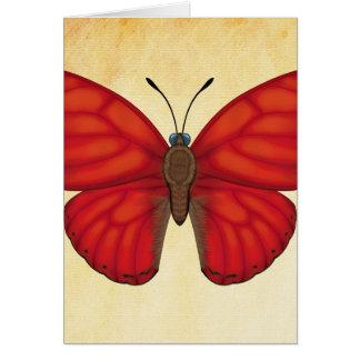 Cartão Borboleta vermelha do planador do sangue