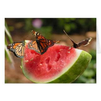 Cartão Borboletas e melancia