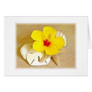 Cartão Bordas macias do hibiscus e dos Seashells