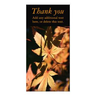 Cartão Bordo japonês 1 obrigado das cores do outono você