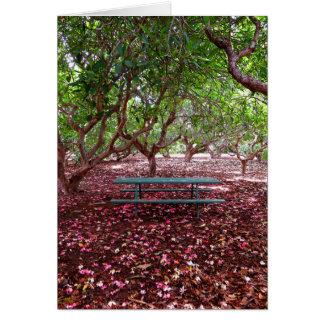 Cartão Bosque do Plumeria
