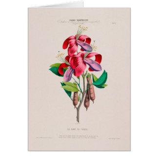 Cartão botânico